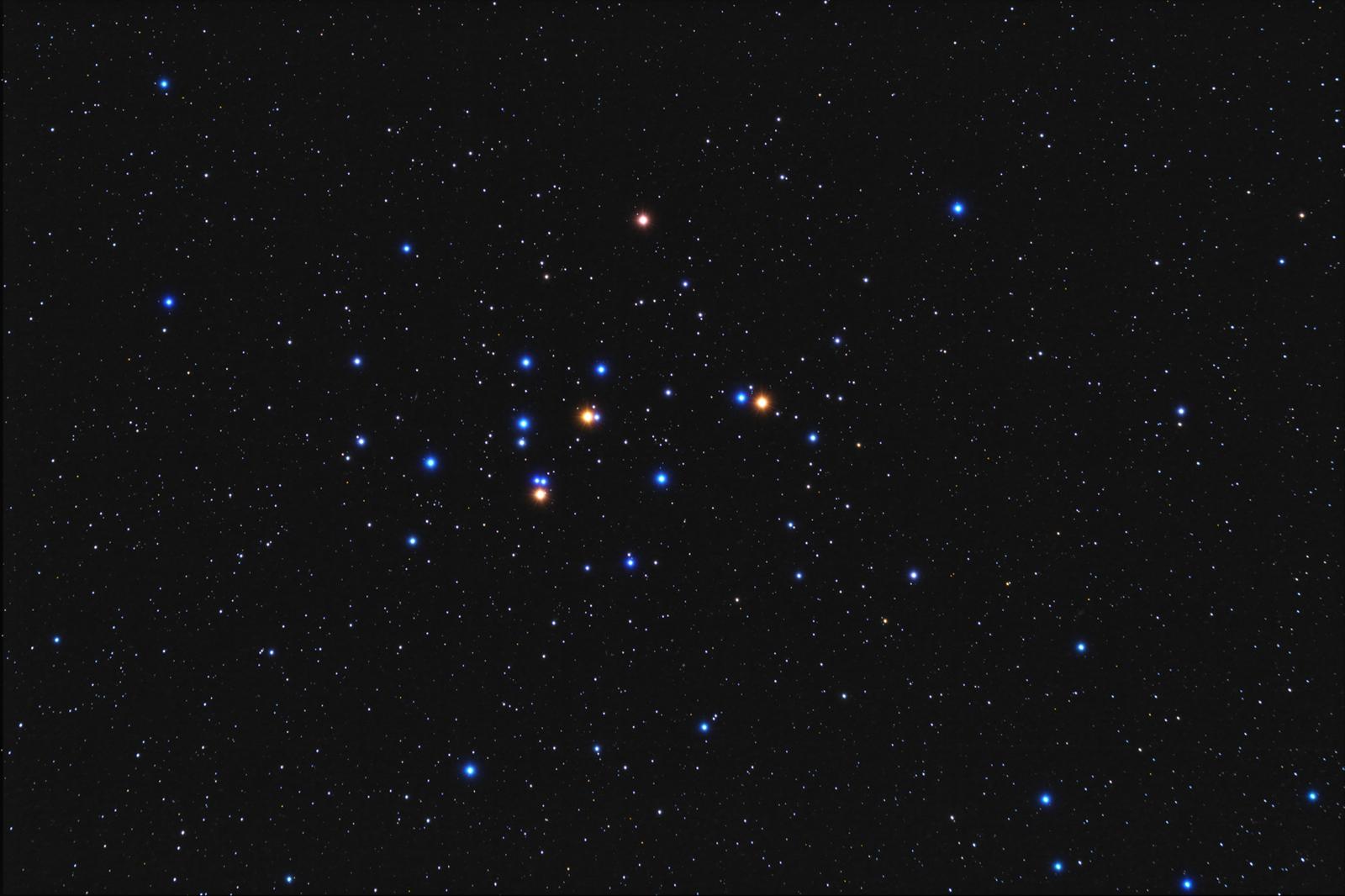 M44 l'amas de la ruche - TS81 M44_red