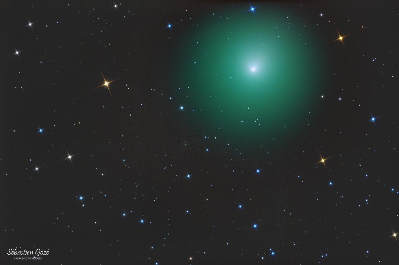 Comète 46P/Wirtanen au newton Comete%2046P%20Wirtanen%20newton%20copyr